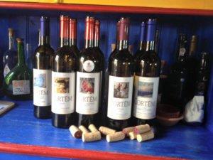 Wine tasting Quinta Serena. Macalhona